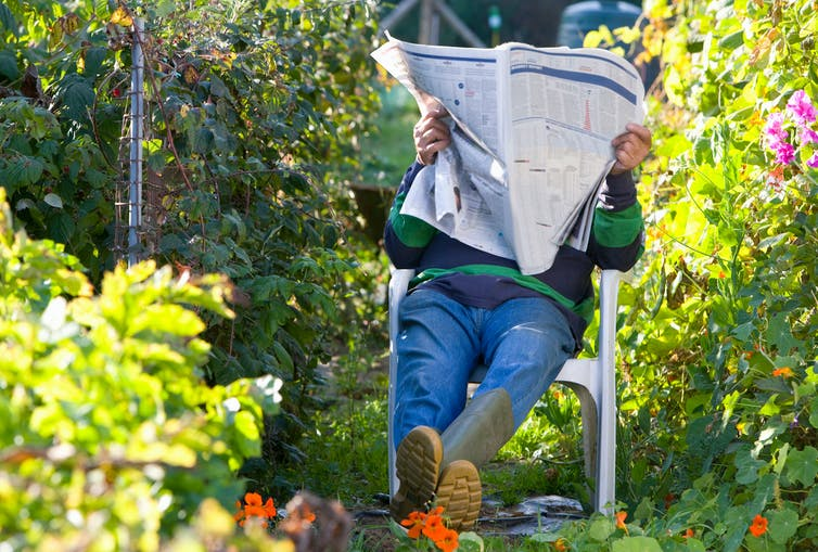 Five ways to use your garden to support your wellbeing